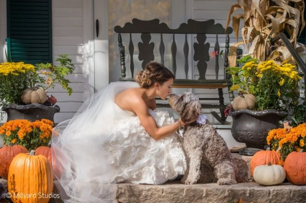 How You Can Include Your Dog in Your Wedding